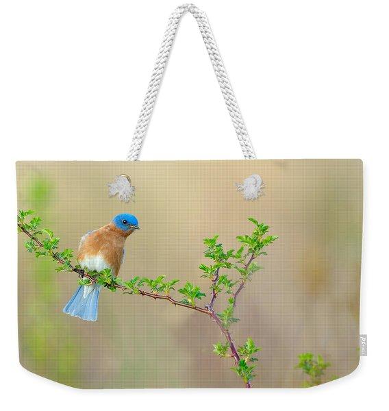 Bluebird Breeze Weekender Tote Bag