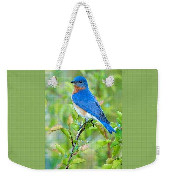 Bluebird Joy Weekender Tote Bag