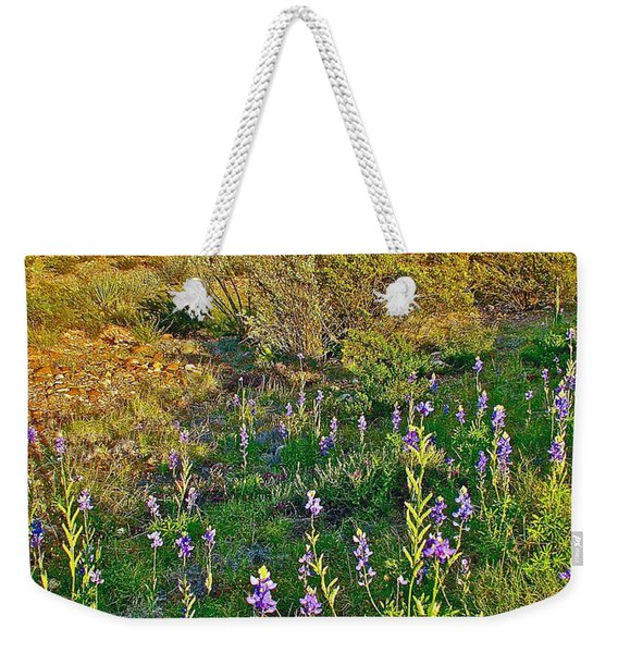 Bluebonnets And Creosote Bushes In Big Bend National Park-texas Weekender Tote Bag