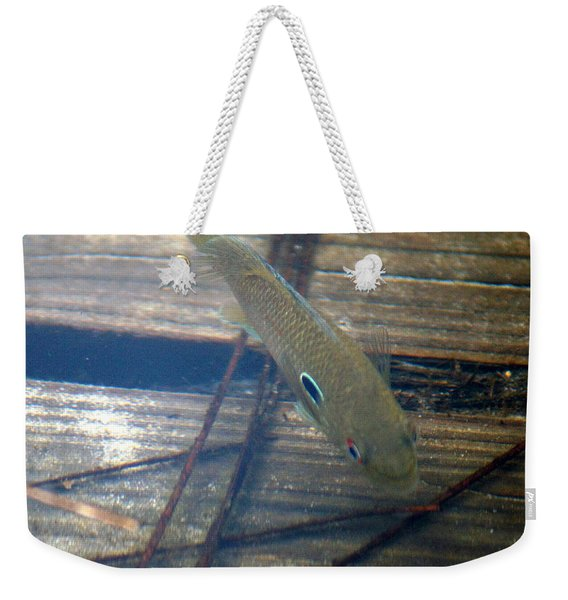 Bluegill On The Hunt Weekender Tote Bag
