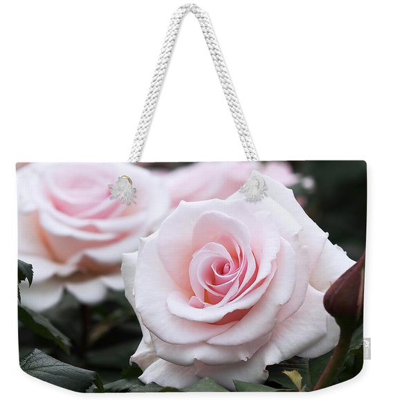 Blush Pink Roses Weekender Tote Bag