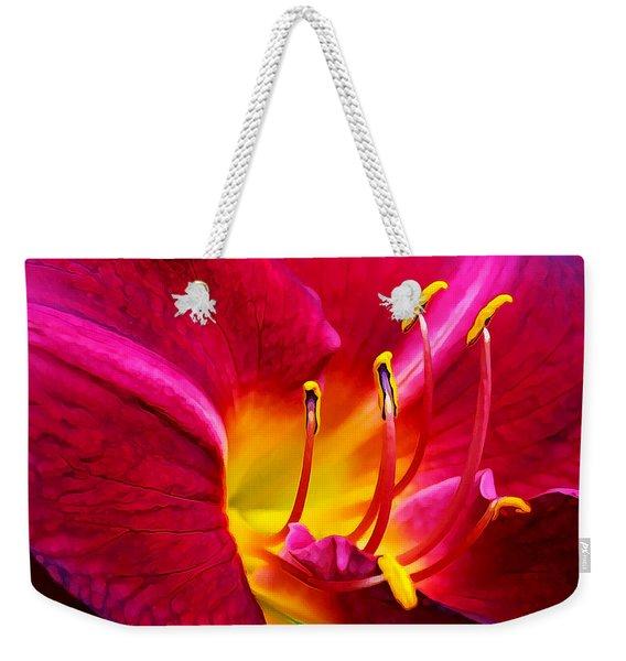 Boothbay Burgundy Weekender Tote Bag