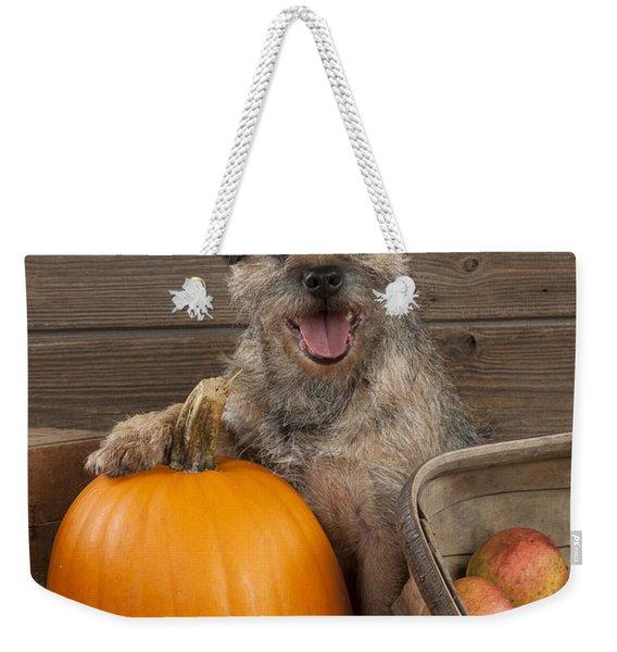 Border Terrier In Autumn Weekender Tote Bag