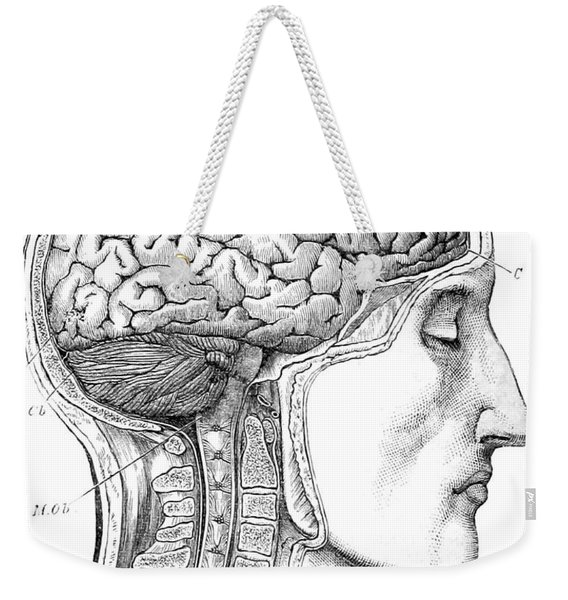 Brain From Right Side, 1883 Weekender Tote Bag