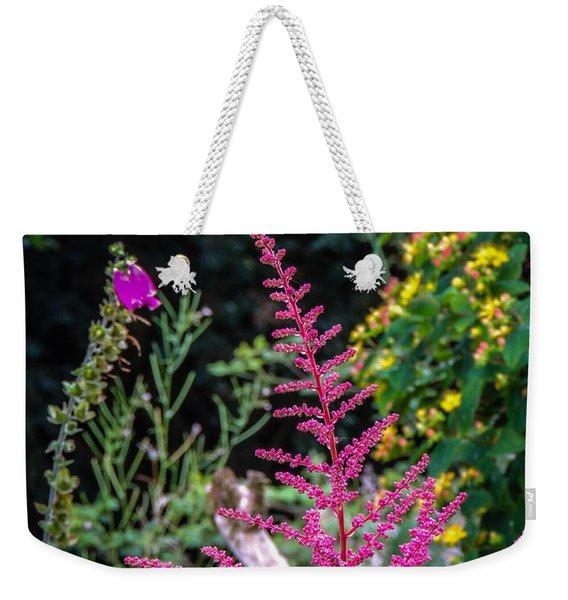 Brilliant Astilbe In Markree Castle Gardens Weekender Tote Bag