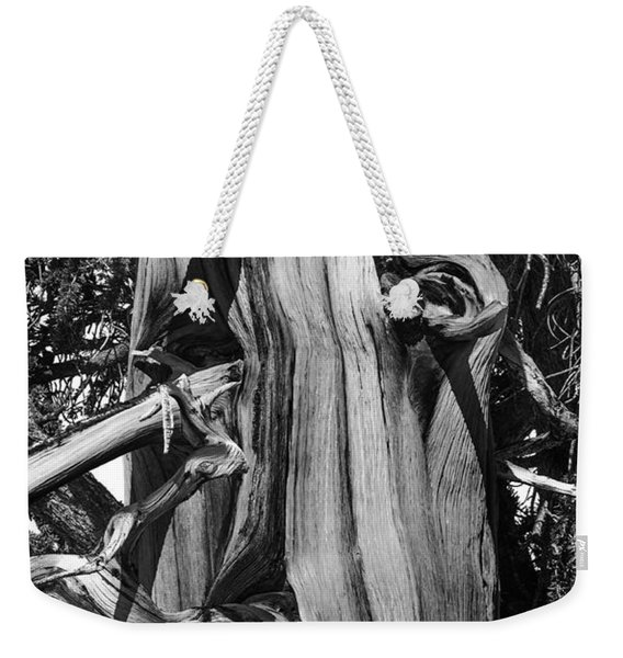 Weekender Tote Bag featuring the photograph Bristle-cone Pine-2 by Mae Wertz