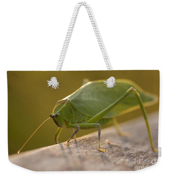 Broad-winged Katydid Weekender Tote Bag