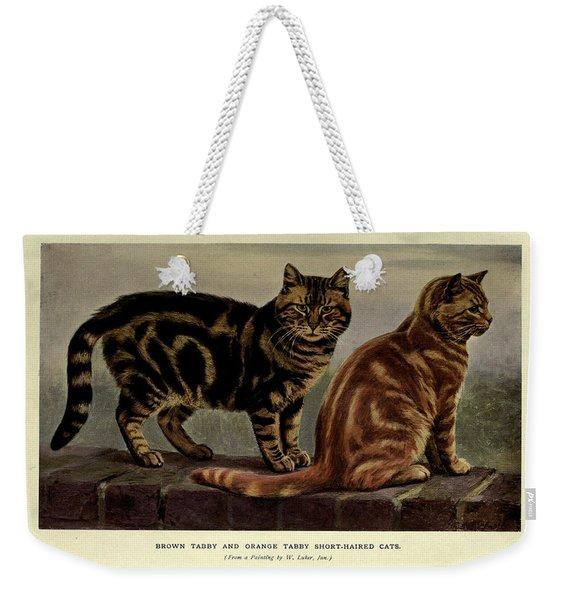 Brown Tabby And Orange Tabby Cats Weekender Tote Bag