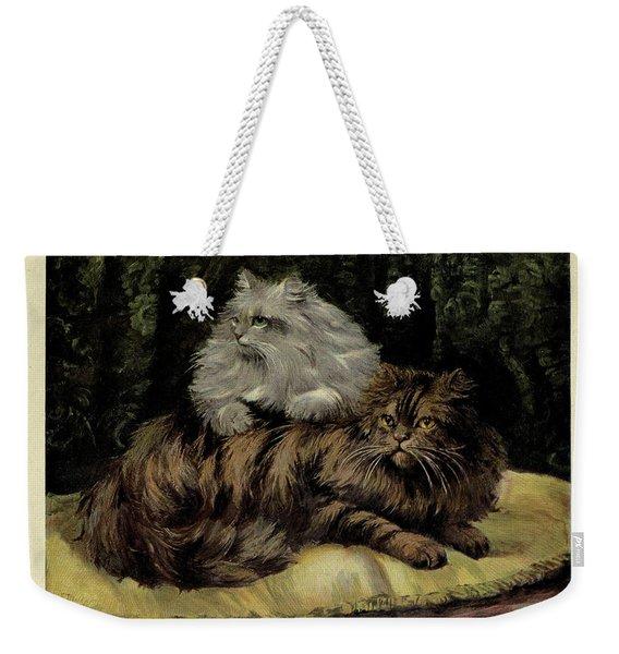 Brown Tabby And Silver Persian Weekender Tote Bag