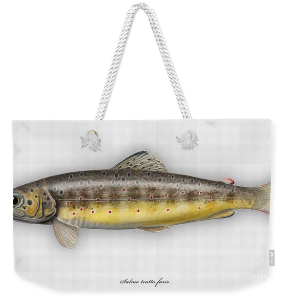 Brown Trout - Salmo Trutta Morpha Fario - Salmo Trutta Fario - Game Fish - Flyfishing Weekender Tote Bag