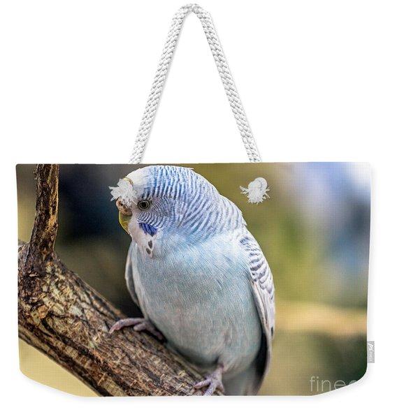 Hello World Weekender Tote Bag