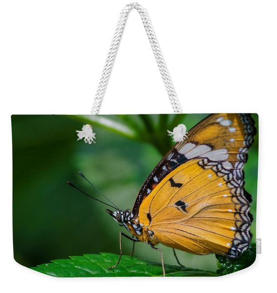 Weekender Tote Bag featuring the photograph Butterfly  by Garvin Hunter