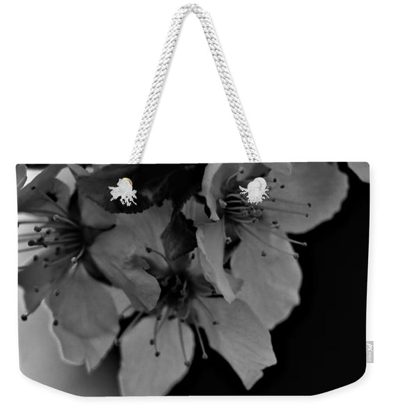 Cab Apple Blossoms In Black N White Weekender Tote Bag
