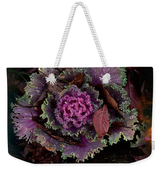 Cabbage With Butterfly Nebula Weekender Tote Bag