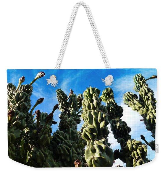 Cactus 1 Weekender Tote Bag
