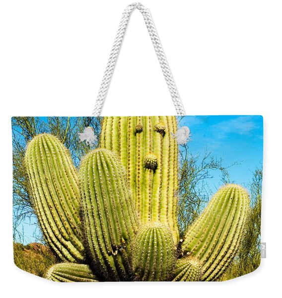 Weekender Tote Bag featuring the photograph Cactus Face by Mae Wertz