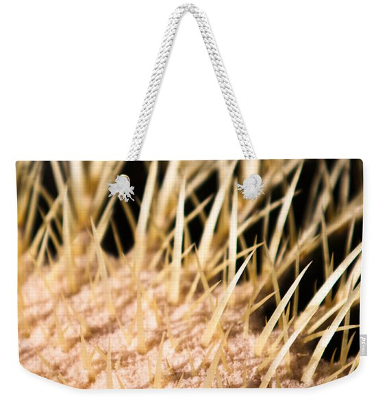 Weekender Tote Bag featuring the photograph Cactus Skin by John Wadleigh