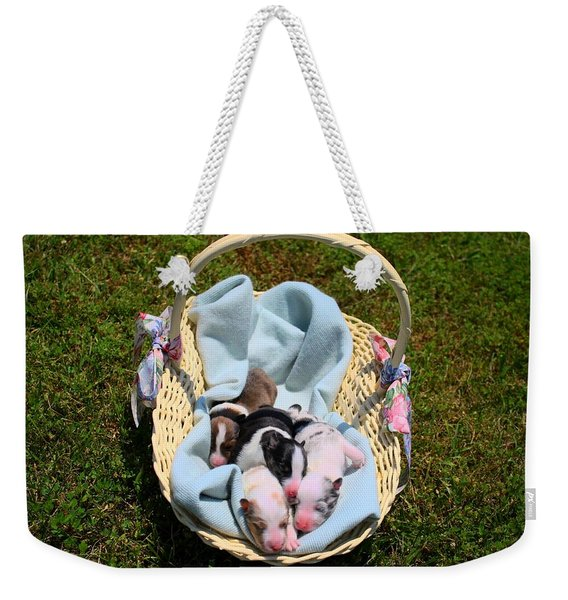 Calicos Pups At Two Days Weekender Tote Bag