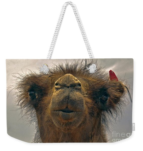 Camel In The Gobi- Mongolia Weekender Tote Bag