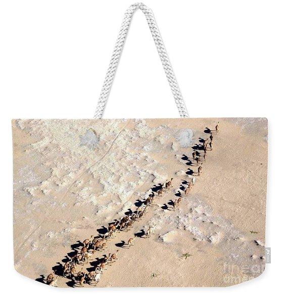 Camels Walking In Desert Weekender Tote Bag
