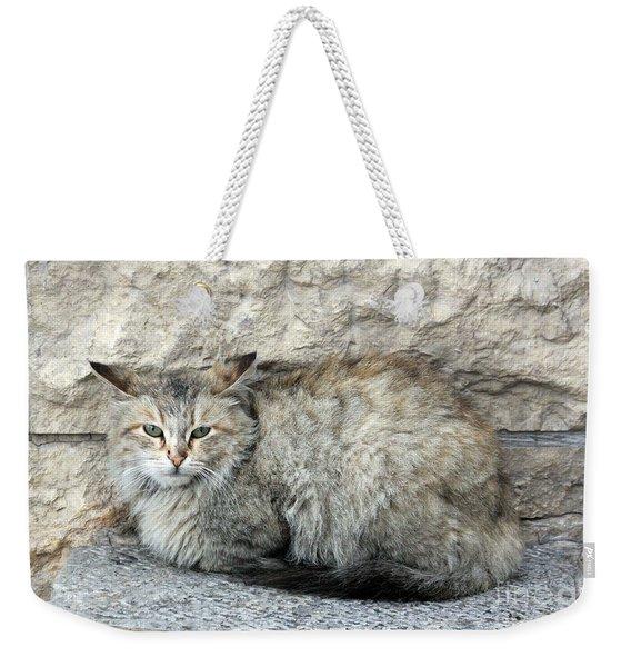 Camo Cat Weekender Tote Bag