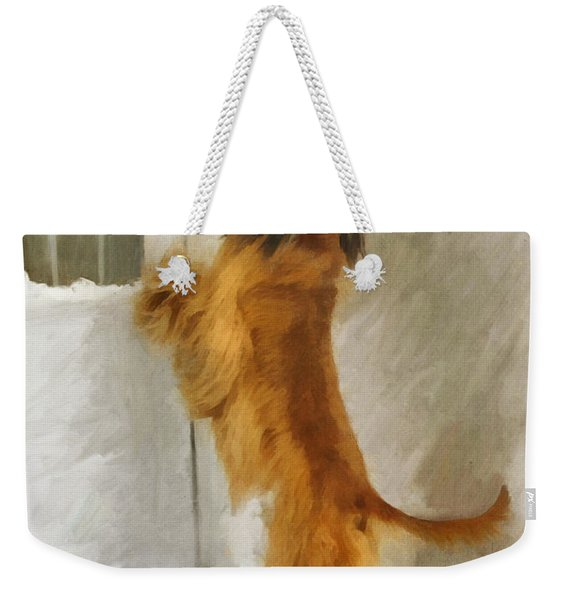 Can I Come In Now? Weekender Tote Bag