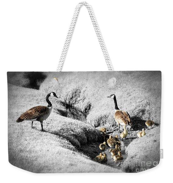 Canada Geese Family Weekender Tote Bag