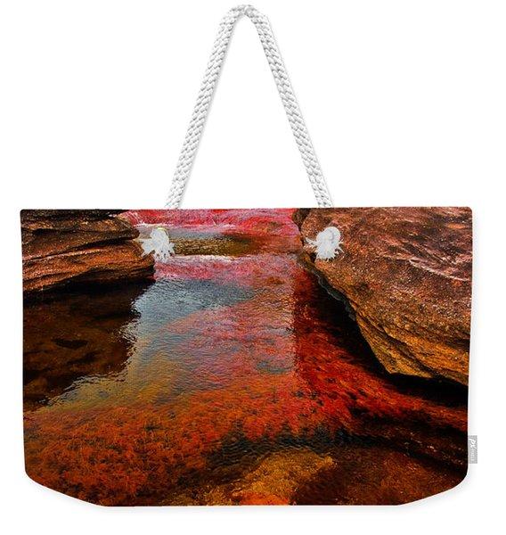 Cano Cristales Weekender Tote Bag
