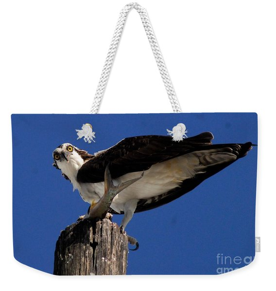 Cant Hide From Her Weekender Tote Bag