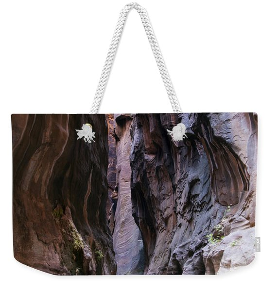Canyon Color Weekender Tote Bag