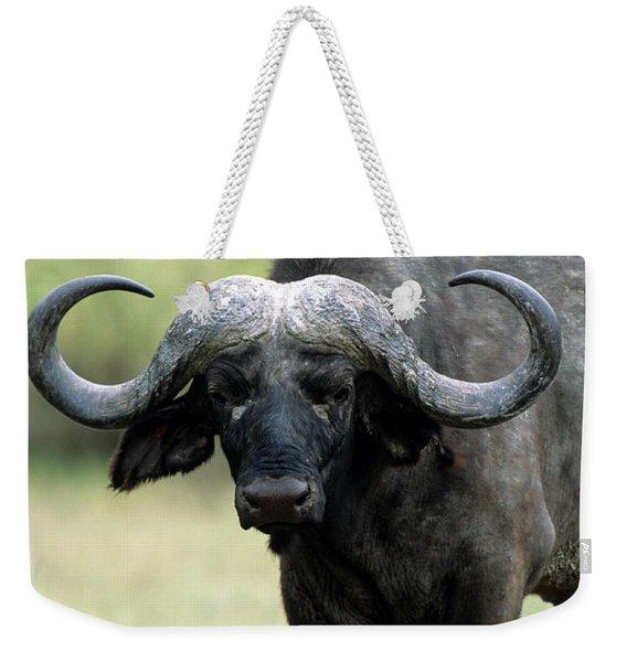 Cape Buffalo, Male Weekender Tote Bag