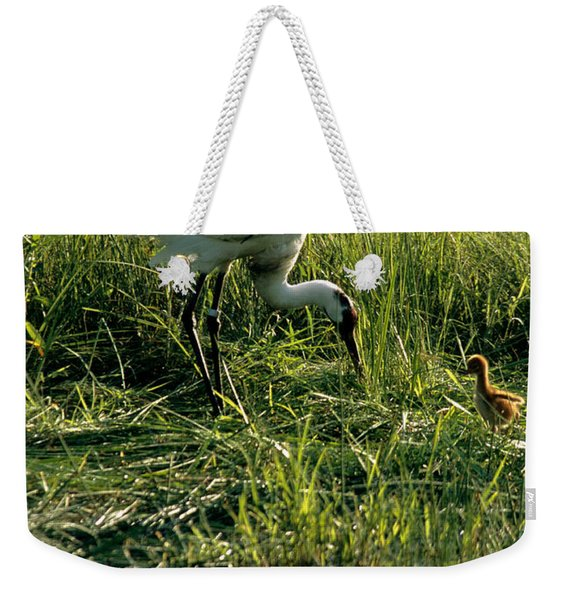Captive Whooping Crane With Chick Weekender Tote Bag