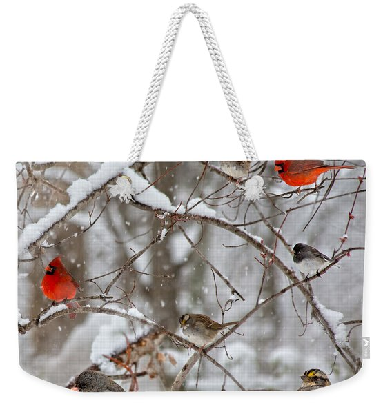 Cardinal Meeting In The Snow Weekender Tote Bag