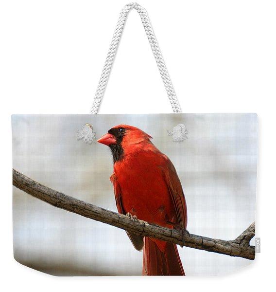 Cardinal On Branch Weekender Tote Bag