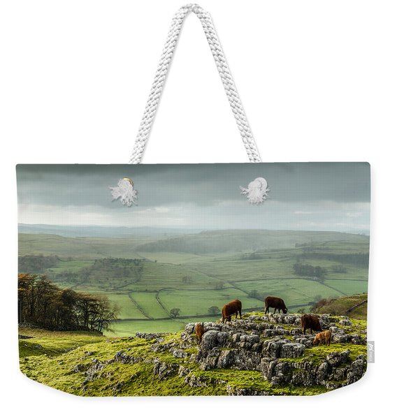 Cattle In The Yorkshire Dales Weekender Tote Bag
