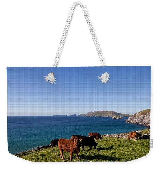 Cattle With Distant Blasket Islands Weekender Tote Bag