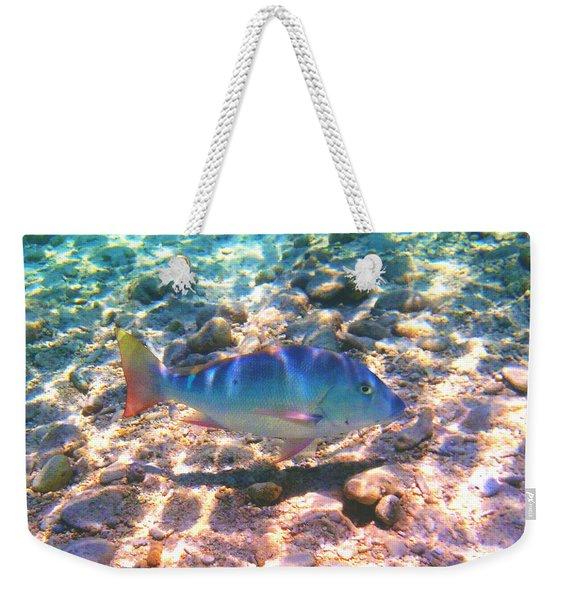 Cayman Snapper Weekender Tote Bag