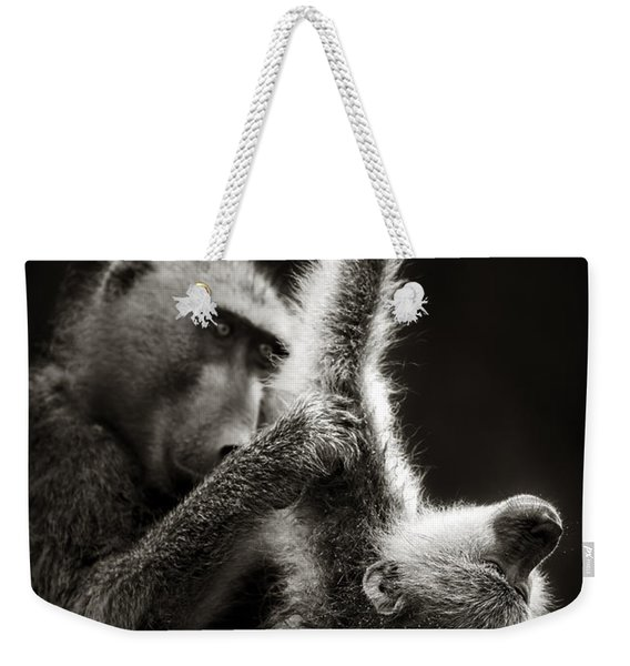 Chacma Baboons Grooming Weekender Tote Bag