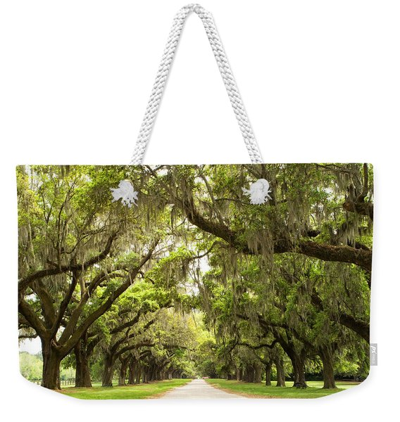 Charleston Avenue Of Oaks Weekender Tote Bag