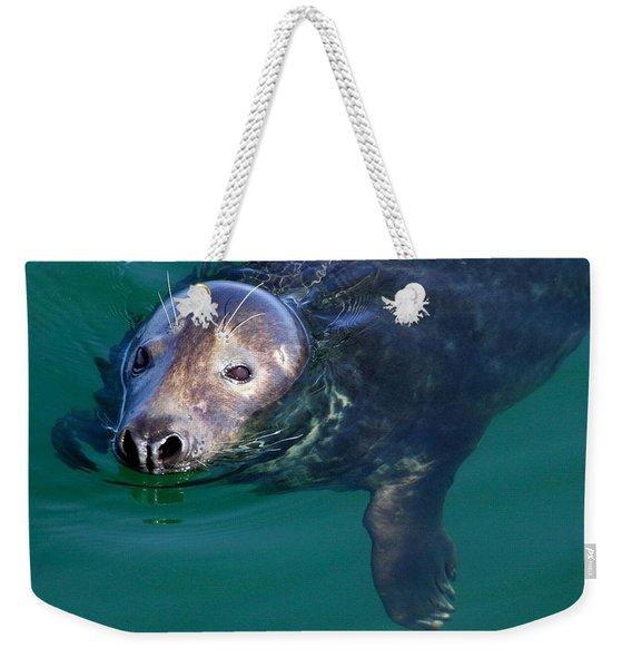 Chatham Harbor Seal Weekender Tote Bag
