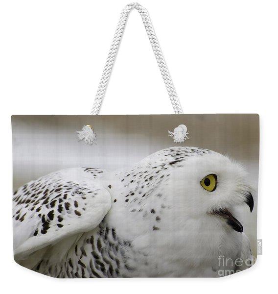 Cheeky Snow Owl Weekender Tote Bag