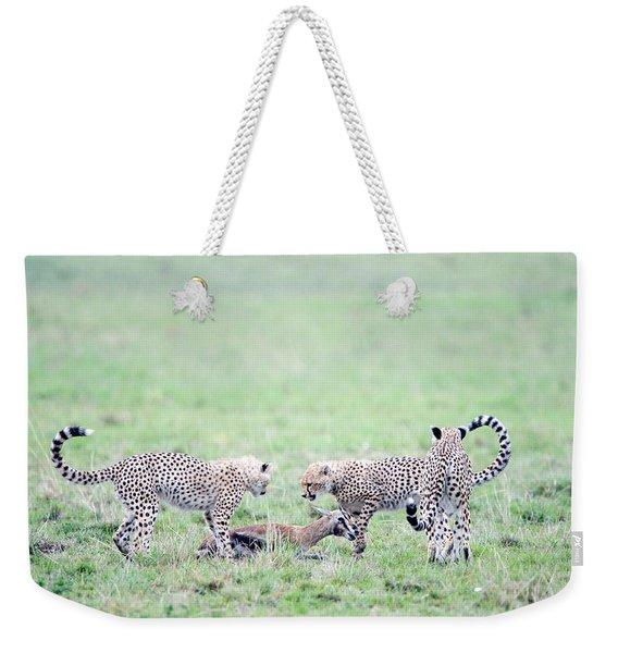 Cheetah Cubs Acinonyx Jubatus Hunting Weekender Tote Bag