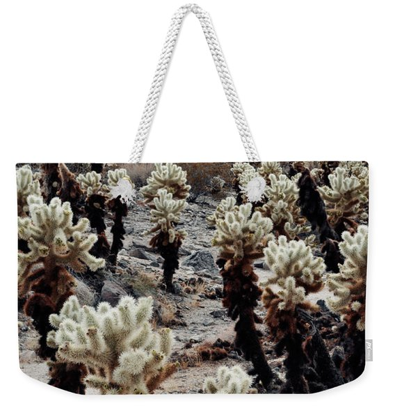Cholla Teddy Bear Cactus Garden  Weekender Tote Bag