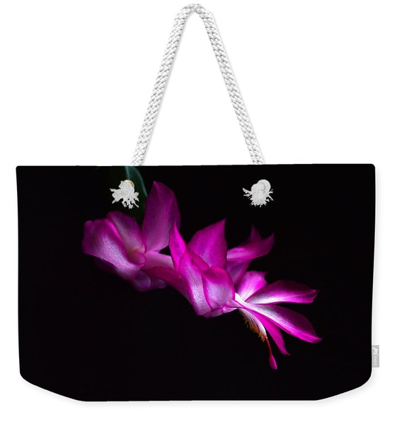 Weekender Tote Bag featuring the photograph Christmas Cactus Blossom by Bill Swartwout Photography