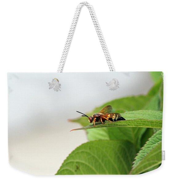Cicada Killer Weekender Tote Bag