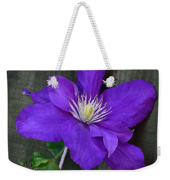 Weekender Tote Bag featuring the photograph Clematis On A String by Jeremy Hayden