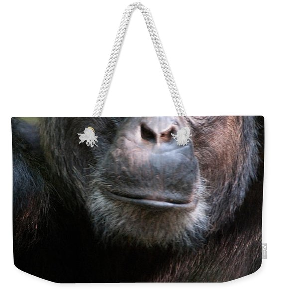 Close-up Of A Chimpanzee Pan Weekender Tote Bag