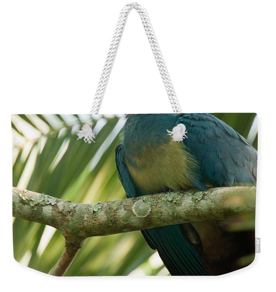 Close-up Of A Great Blue Turaco Weekender Tote Bag