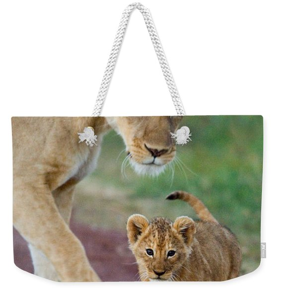 Close-up Of A Lioness And Her Cub Weekender Tote Bag