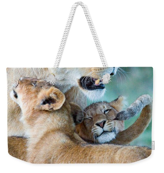 Close-up Of A Lioness And Her Two Cubs Weekender Tote Bag